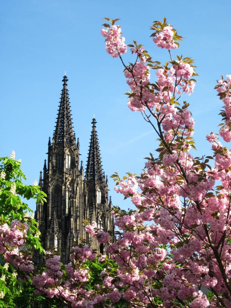 Когда лучше ехать в Прагу: весна