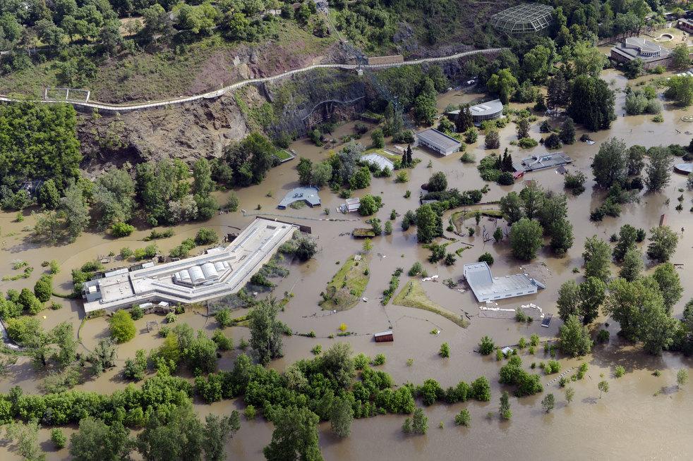 Наводнение 2002 года в зоопарке Праги