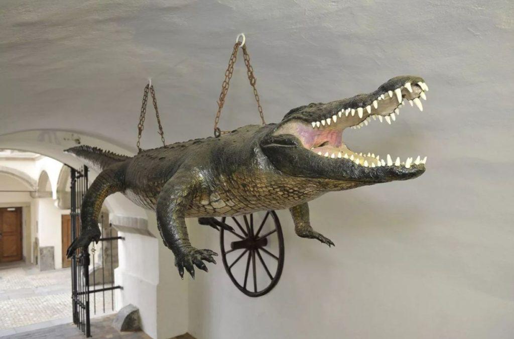 Брненский крокодил